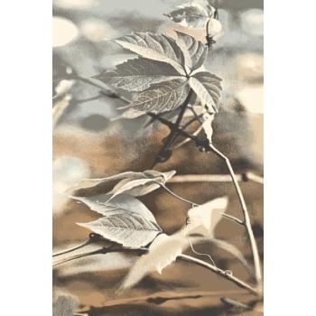 natural ramo agnella.jpg